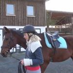 Elischeba mit Pferd