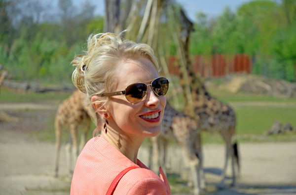 giraffenhintergrund