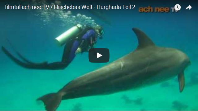 filmtal ach nee TV Elischebas Welt Hurghada 2